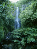 One Hundred Foot Wailua Falls Near Oheo, Hana Coast, Maui, Hawaii, USA Photographic Print by Robert Francis