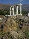 Remaining Doric Columns, Samothrace, Ionian Islands, Greece, Europe Photographic Print by Christina Gascoigne