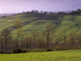 Landscape of the Crete Senesi Area, Southeast of Siena, Near Arbia, Tuscany, Italy, Europe Photographic Print by Patrick Dieudonne