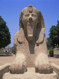 Alabaster Sphinx of Amon-Ofis II, Memphis, Egypt, North Africa, Africa Photographic Print by Nigel Francis