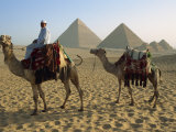 Camels and Rider at the Giza Pyramids, UNESCO World Heritage Site, Giza, Cairo, Egypt Photographic Print by Dominic Harcourt-webster