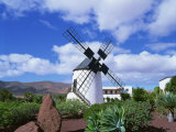 Traditional Windmill Near Antigua, Fuerteventura, Canary Islands, Spain, Europe Photographic Print by Nigel Francis