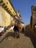 Elephant Transport for Tourists, Amber Palace, Near Jaipur, Rajasthan State, India Photographic Print by Harding Robert