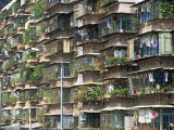 Detail of Housing, Guangzhou, China Photographic Print by Tim Hall