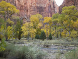 Zion National Park, Utah, United States of America, North America Photographic Print by Robert Harding