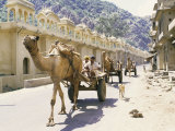 Street Scene with Camel Cart, Jaipur, Rajasthan State, India Photographic Print by Alain Evrard
