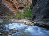 Virgin River Flowing Through the Virgin Narrows, Zion National Park, Utah, USA Photographic Print by Lee Frost