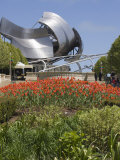 Jay Pritzker Pavillion Designed by Frank Gehry, Millennium Park, Chicago, Illinois, USA Photographic Print by Amanda Hall