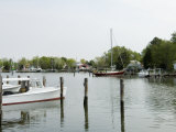 Oxford Bellevue Ferry, Oxford, Talbot County, Tred Avon River, Chesapeake Bay Area, Maryland, USA Photographic Print by Robert Harding