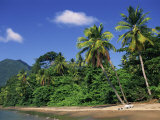 Palm Lined Beach, Dominica, West Indies, Caribbean, Central America Photographic Print by Fred Friberg