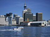Views of the City and Famous Tower from the Water, Auckland, North Island, New Zealand, Pacific Photographic Print by Dominic Harcourt-webster