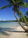 Bavaro Beach, Dominican Republic, West Indies, Caribbean, Central America Photographic Print by Lightfoot Jeremy
