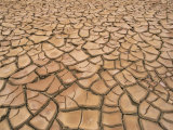 Arid Landscape of Dry Cracked Earth in a Drought, South Australia, Australia, Pacific Photographic Print by Mawson Mark