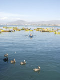 Two Men Bring in Harvest of the Sea, Chimbote, Chile, South America Photographic Print by McCoy Aaron