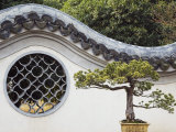Bonzai Tree and Toled Arch Wall in Winding Garden at West Lake, Hangzhou, Zhejiang Province, China Photographic Print by Kober Christian