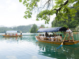 Water Taxis, Lake Bled, Slovenia, Europe Photographic Print by Lawrence Graham