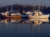 Fishing Boats Moored at Dusk, Oslo Fjord, Bestum Kilen, Near Oslo, Norway, Scandinavia, Europe Photographic Print by Hart Kim