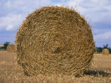 Close-Up of a Circular Straw Bale in a Field in Nottinghamshire, England, United Kingdom, Europe Photographic Print by Mawson Mark