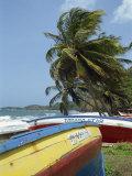 Kendal, Tobago, West Indies, Caribbean, Central America Fotografisk trykk av Harding Robert