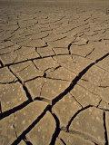 Atacama Desert, Chile, South America Photographic Print by Mcleod Rob