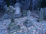 Frost on Headstones and Gravestones in a Graveyard at Ossington, Nottinghamshire, England Photographic Print by Mawson Mark