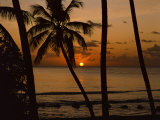 Beach at Sunset, Barbados, West Indies, Caribbean, Central America Photographic Print by Harding Robert