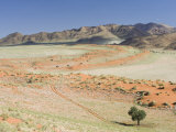 Wolvedans, Namib Rand Nature Reserve, Namibia, Africa Photographic Print by Milse Thorsten