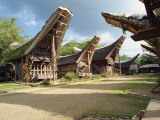 Toraja Houses and Granaries, Toraja Area, Sulawesi, Indonesia, Southeast Asia Photographic Print by Harding Robert