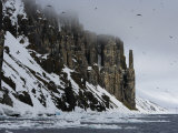 Bird Cliff, Bruennich's Guillemots, Spitsbergen, Svalbard, Norway, Scandinavia Photographic Print by Milse Thorsten
