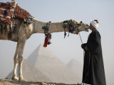 Bedouin Guide with His Camel, Overlooking the Pyramids of Giza, Cairo, Egypt Photographic Print by Mcconnell Andrew