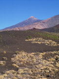 Mount Teide, Tenerife, Canary Islands, Spain, Atlantic, Europe Photographic Print by Harding Robert