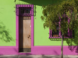 Colourfully Painted Housefronts in the Trendy District of Barrio Bellavista, Santiago, Chile Photographic Print by Gavin Hellier