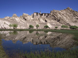 Old Summer Palace of the Kings of Ladakh and Gompa, Shey, Ladakh, India Photographic Print by Pate Jenny
