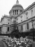 Black and White Image of St Paul's Cathedral, London, England, United Kingdom, Europe Photographic Print by Kelly Michael