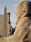 Sphinx Stands in Front of Luxor Temple, Luxor, Thebes, UNESCO World Heritage Site, Egypt Photographic Print by Mcconnell Andrew