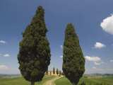Countryside Near Pienza, Val D'Orcia, Siena Province, Tuscany, Italy, Europe Photographic Print by Pitamitz Sergio