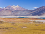 Altiplano, Los Flamencos National Reserve, Atacama Desert, Norte Grande, Chile Photographic Print by Gavin Hellier