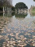 Pool, Canopo, Hadrian's Villa, UNESCO World Heritage Site, Tivoli, Near Rome, Lazio, Italy Photographic Print by Olivieri Oliviero