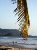 Santa Teresa Beach, Nicoya Peninsula, Costa Rica, Central America Photographic Print by Levy Yadid