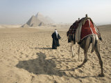 Bedouin Guide and Camel Approaching the Pyramids of Giza, Cairo, Egypt,North Africa Photographic Print by Mcconnell Andrew