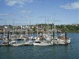 Kinsale Harbour, County Cork, Munster, Republic of Ireland, Europe Fotografisk trykk av Harding Robert