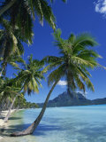 Bora Bora, Tahiti, Society Islands, French Polynesia, Pacific Islands, Pacific Photographic Print by Mawson Mark