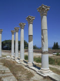 Asklepieion, Kos, Dodecanese, Greek Islands, Greece, Europe Photographic Print by Jenner Michael
