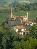 Tenuta La Volta, an Old Fortified Wine Cantina, Near Barolo, Piedmont, Italy, Europe Photographic Print by Newton Michael