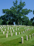 Rows of Headstones on Graves in the Arlington Cemetery, Virginia, USA Photographic Print by Hodson Jonathan