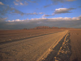 Pampa, Llalqui, Atacama Desert, Chile, South America Photographic Print by Mcleod Rob