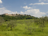 Montepulciano, Val D'Orcia, Siena Province, Tuscany, Italy, Europe Photographic Print by Pitamitz Sergio