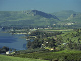 Tabgha, Sea of Galilee, Israel, Middle East Photographic Print by Simanor Eitan