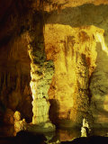 Speleothems, Davies Springs, Carlsbad Caverns National Park, New Mexico, USA Photographic Print by Westwater Nedra
