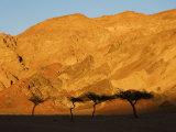 Desertscape, Near Nuweiba, Sinai, Egypt, North Africa, Africa Photographic Print by Schlenker Jochen